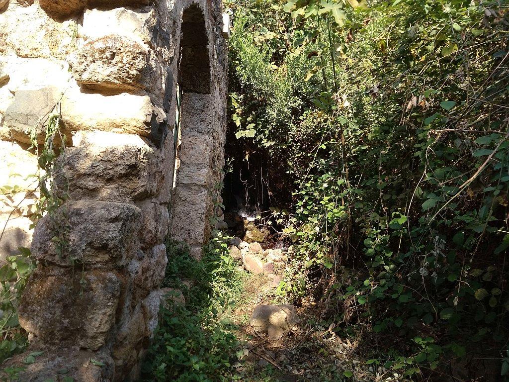 Север Израиля. Тель-Дан
